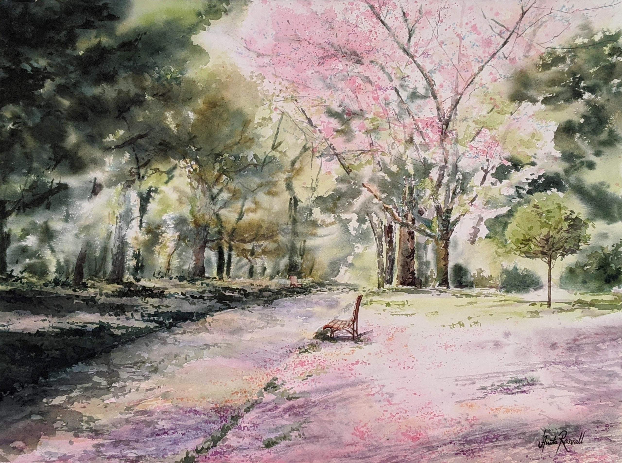 Promenad under körsbärsblommor